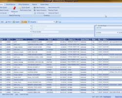 Sales Search Screenshot